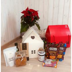 Kalėdinė dovana - namelis