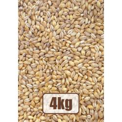Pearl Barley Groats 4 kg.