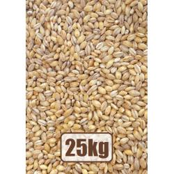 Org. pearl barley 25kg