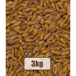 Ekologiški kviečiai Spelta 3kg